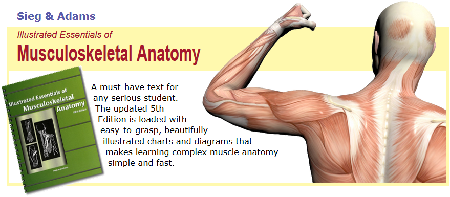 Musculoskeletal Anatomy Textbook
